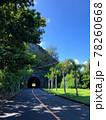 世界自然遺産の小笠原諸島 サイクリング中の楽しみ方 78260668
