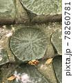 兵庫県にある天然記念物の玄武洞公園の階段に使われている丸い玄武岩 78260781