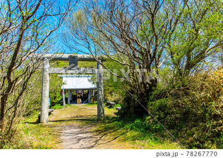 新緑の雲仙 妙見神社 【長崎県雲仙市】 78267770