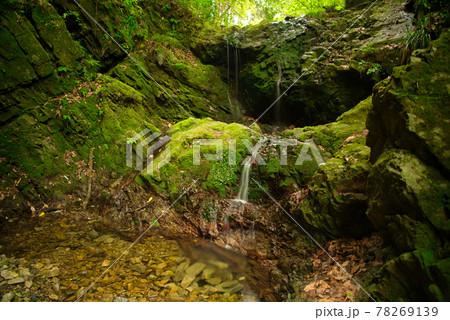 御主殿の滝 (八王子城跡) 78269139