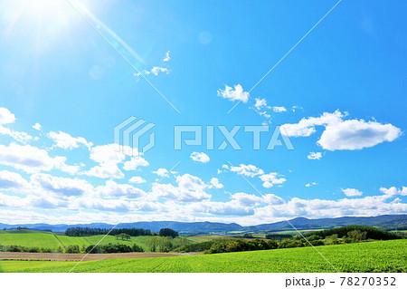 北海道 夏の青空と美瑛の大地を照らす陽射し 78270352