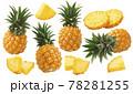 Pineapple set isolated on white background. Whole fruit, round and triangular slices 78281255