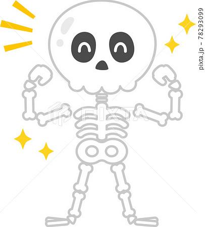 健康な骨、ガイコツのキャラクター 78293099