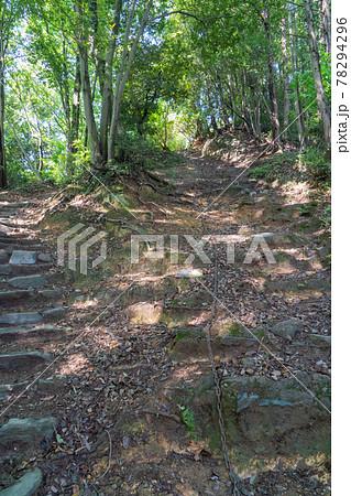 天覧山から多峰主山への登山道(奥武蔵自然公園) 78294296