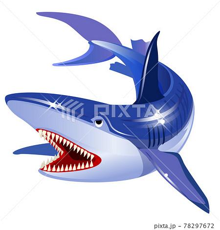 海の生き物-サメ 78297672