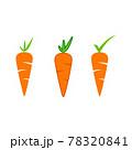 Carrot Vector icon design illustration 78320841