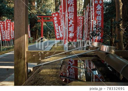 滋賀県、多賀大社の境内社 金咲稲荷大明神のお手水舎と鳥居が見える風景 78332691