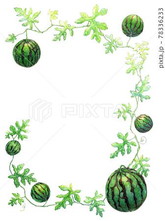 蔓に連なるスイカの飾り枠 78336233