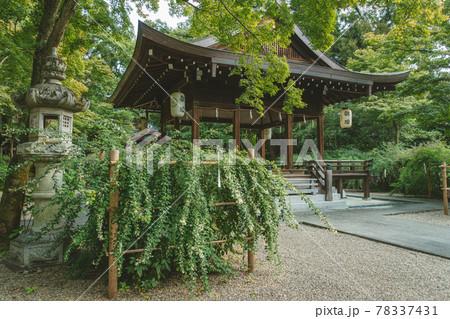 京都、梨木神社の拝殿と萩の花咲く境内風景 78337431