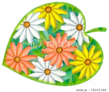 花・葉っぱ 78345188