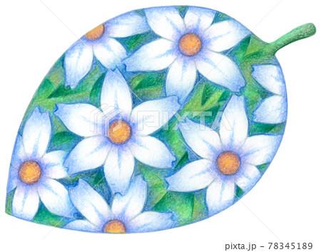 花・葉っぱ 78345189