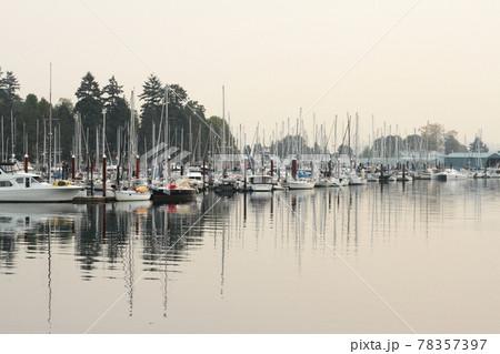 もやの中、スタンレーパークに停泊するボート群と静かな水面 78357397