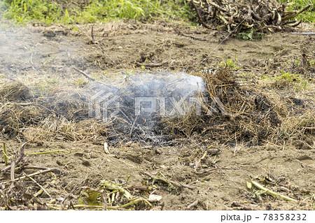 畑で雑草を燃やしている様子。野焼き 78358232