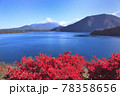 本栖湖と秋富士 78358656