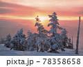 朝焼けの樹氷林 78358658