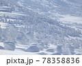 八甲田 樹氷 78358836