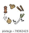 胡椒 生姜 シナモン、ねぎ 玉ねぎのイラスト 78362423