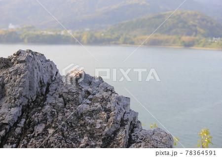 奥浜名湖が見える舘山寺近くの大きな岩 78364591