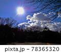 冬の樹々と太陽と雲 78365320