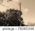 秋の公園・正午前 78365346