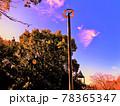 異彩・秋の雲と公園 78365347