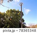 秋空の公園の一角 78365348