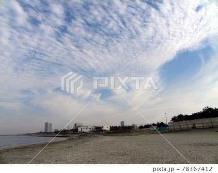 検見川浜のコアジサシ営巣地から見た青空と白い雲 78367412