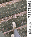 桜が散っている階段を散歩している 78373961
