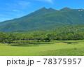 【北海道】晴天下の知床五湖 78375957