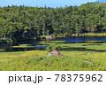 【北海道】晴天下の知床五湖 78375962