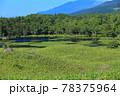 【北海道】晴天下の知床五湖 78375964