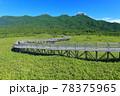 【北海道】盛夏の知床連峰 78375965