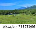 【北海道】盛夏の知床連峰 78375966