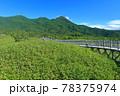 【北海道】盛夏の知床連峰 78375974