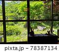 和室から庭を眺めている風景 78387134