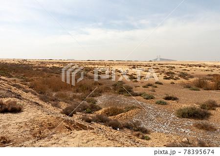 エジプトのスエズ運河橋 78395674