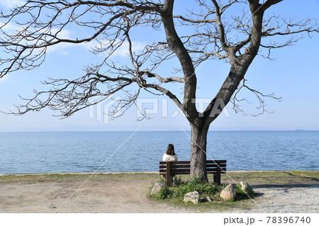 琵琶湖の見えるベンチに座る女の子 78396740