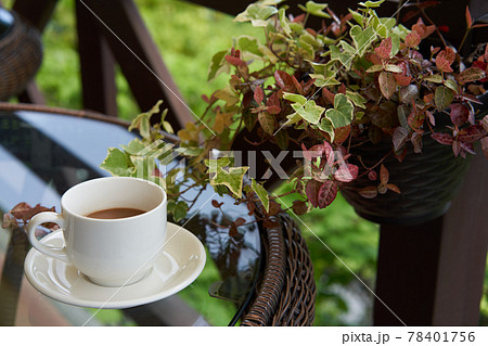 カフェの明るいテラス席に置かれたコーヒーと蔓植物の鉢植え 78401756