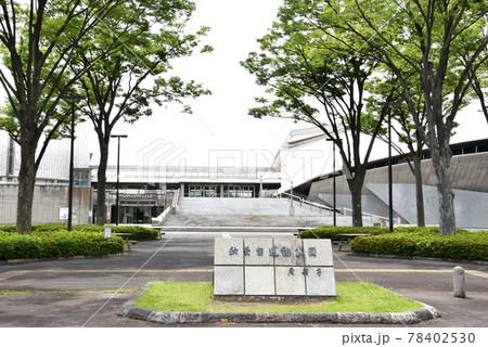 神奈川県藤沢市 秋葉台公園の秋葉台文化体育館と新緑 78402530