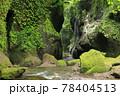 新緑の由布川渓谷 78404513