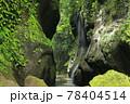 新緑の由布川渓谷 78404514
