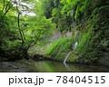 新緑の由布川渓谷 78404515