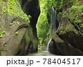 新緑の由布川渓谷 78404517