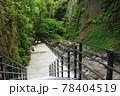新緑の由布川渓谷 78404519