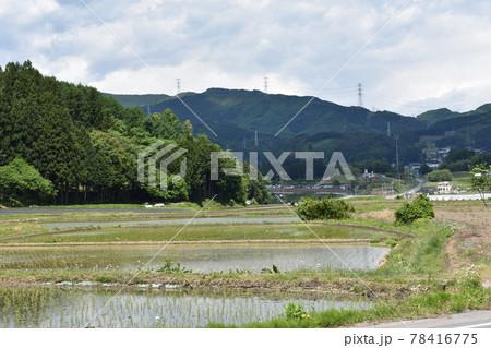 日本 群馬県水上町の初夏の風景 78416775