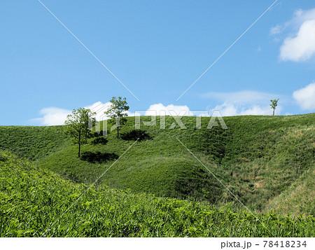 産山村の草原 2021年5月 熊本県阿蘇郡産山村 78418234