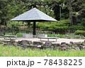 鶴舞公園 菖蒲池 78438225