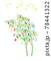 たなばたの笹飾りと短冊、星の水彩イラスト 78441322