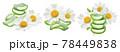 Chamomile and aloe vera set isolated on white background 78449838