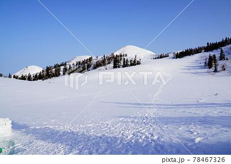 高谷池ヒュッテ付近から見る火打山から焼山 78467326